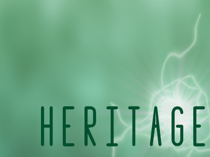 Elizabeth: Heritage available on Amazon